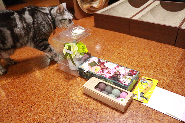 blog_000011356.jpg