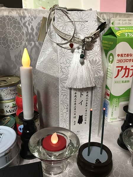 blog_000011359.jpg