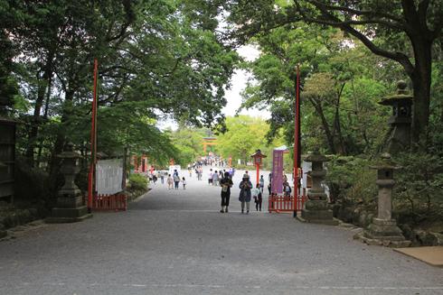 宇佐神宮2017-16