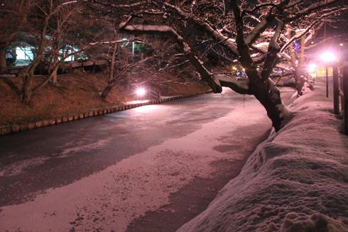 弘前城冬のライトアップ2018-4