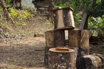 パーシーさんが自分で作ったハイブリッド型の巣箱(板垣さん撮影)