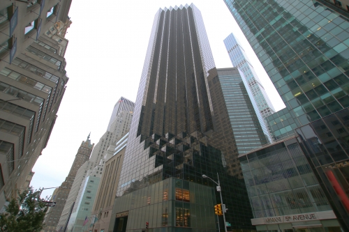 newyork81.jpg