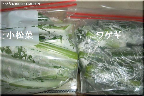 600 小松菜とワケギ