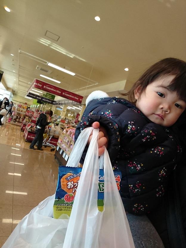 お買い物しーちゃん6(20180215)