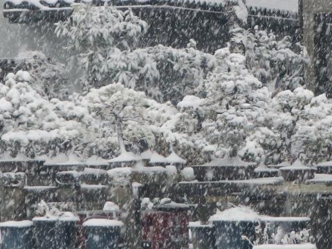 「積雪&FMトランスミッター」⑲
