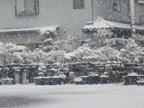 「積雪&FMトランスミッター」⑳