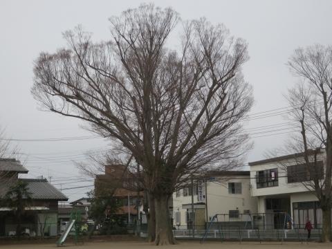 「第73回府中小学校卒業式」 (29)