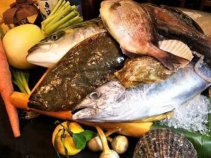 冬の魚1 (3)