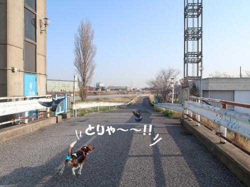 IMG_7112-2.jpg