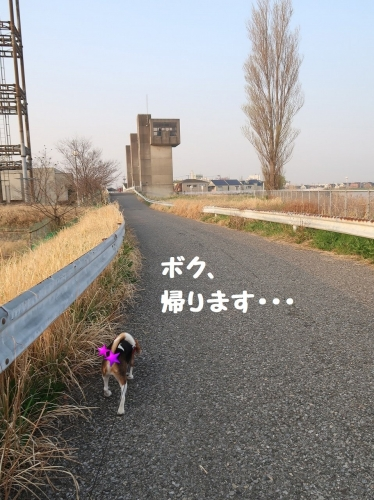 IMG_7605-2.jpg