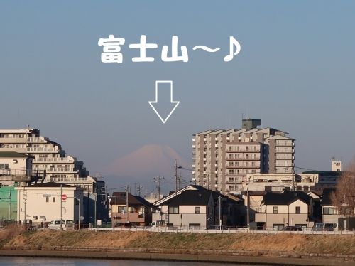 IMG_a5946-2.jpg