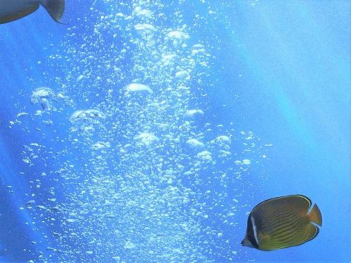 500水の中の空気の泡