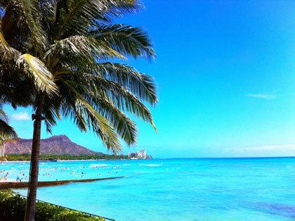 ハワイ旅行が50組100名様に当たります!