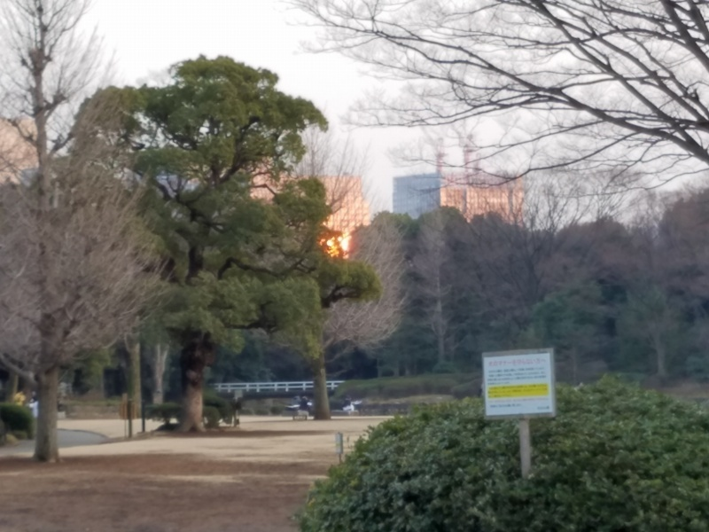 s-touyamano1stlive09.jpg