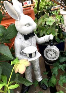ウサギ 時計