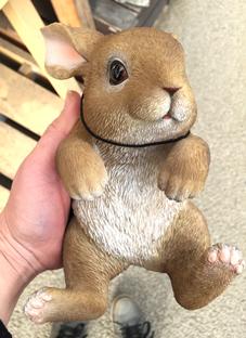 引っ掛けウサギ抱っこ