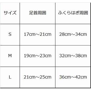 mizuno_biogear_001.jpg