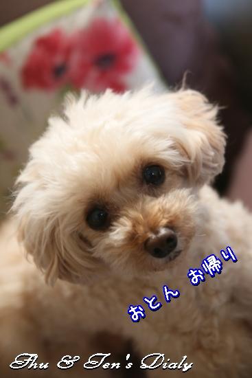 010aIMG_9109.jpg
