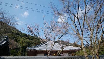 第一日曜写経のお寺