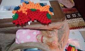 1124 ボランティア編み編み3