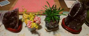 小さなお花が好き♪