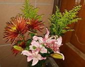 家の外にお花