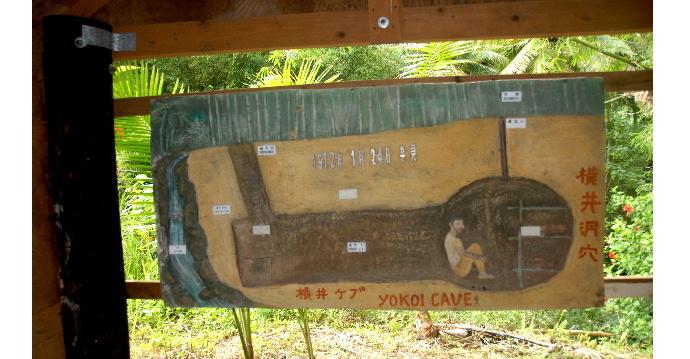 横井庄一さん潜伏 12464