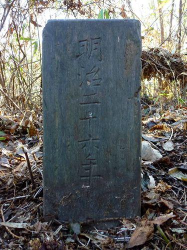 hagigamoriyama_m7.jpg