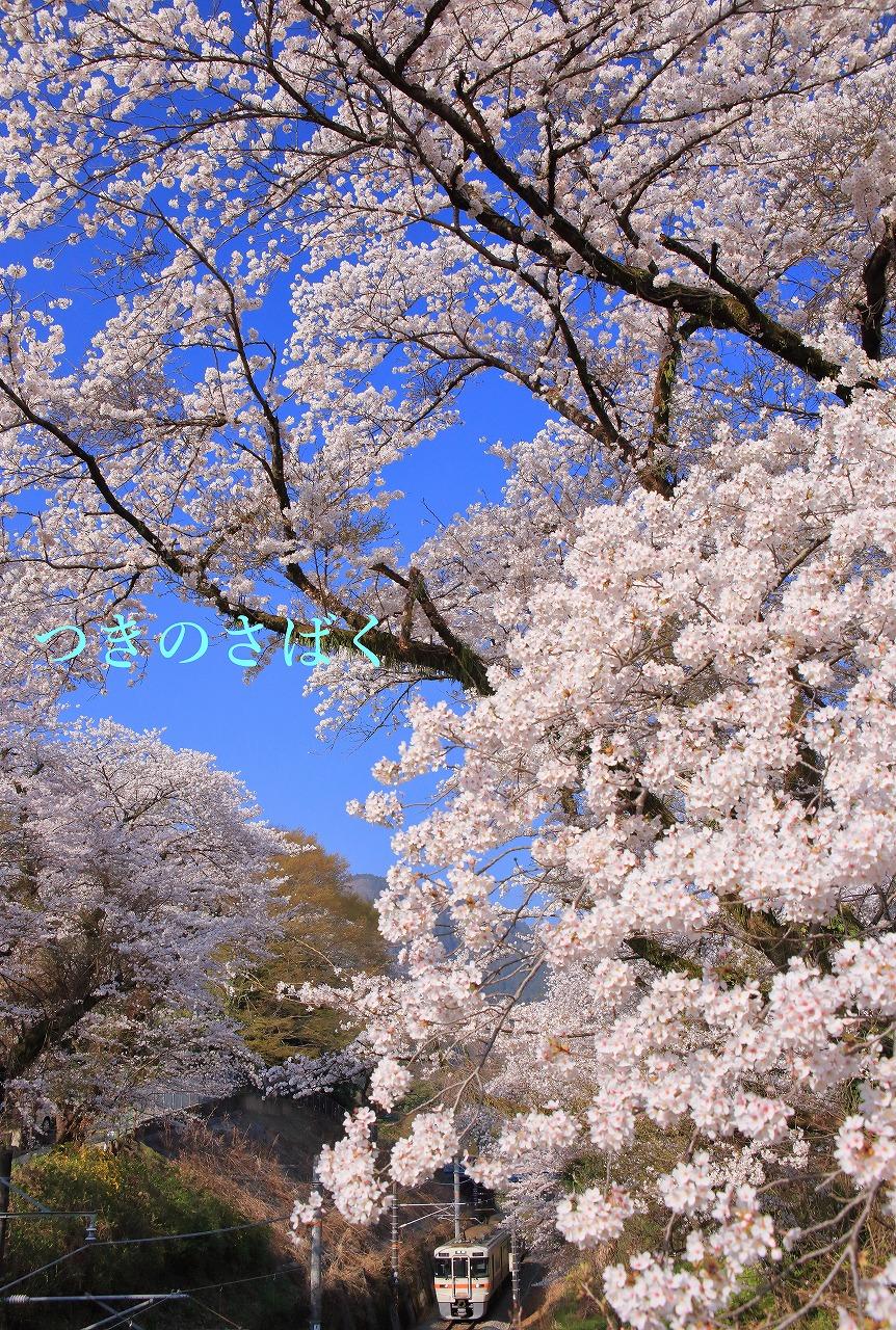 IMG_5921f5200to_1.jpg