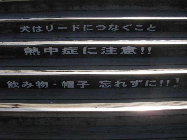 鳥取砂丘201607-2