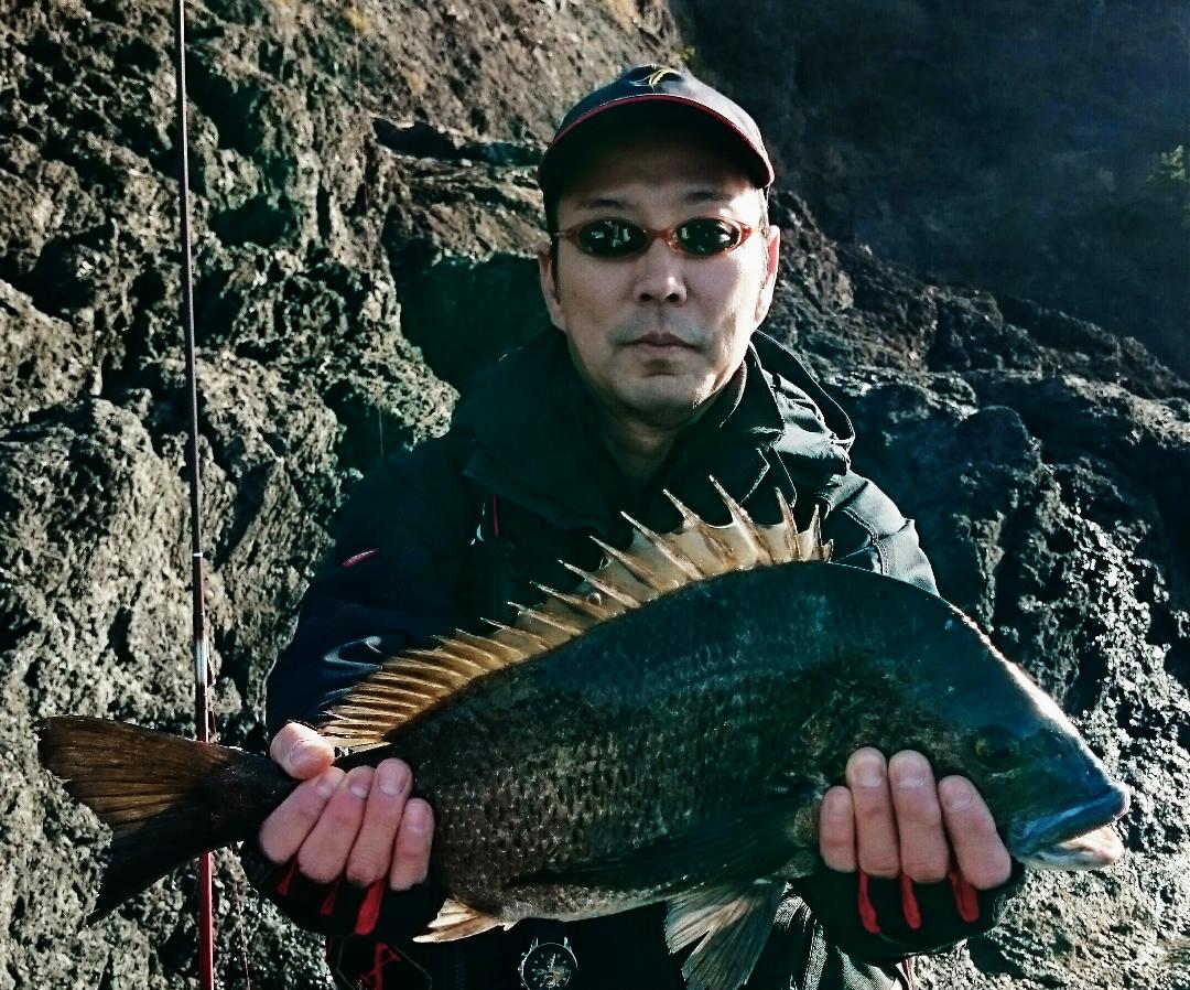 【釣果情報】グレ釣り