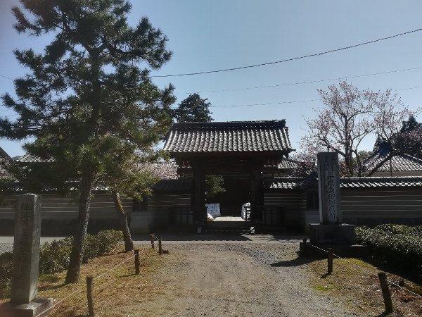 joufugi2-echizen-028.jpg