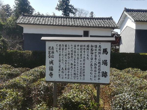 joufugi2-echizen-032.jpg
