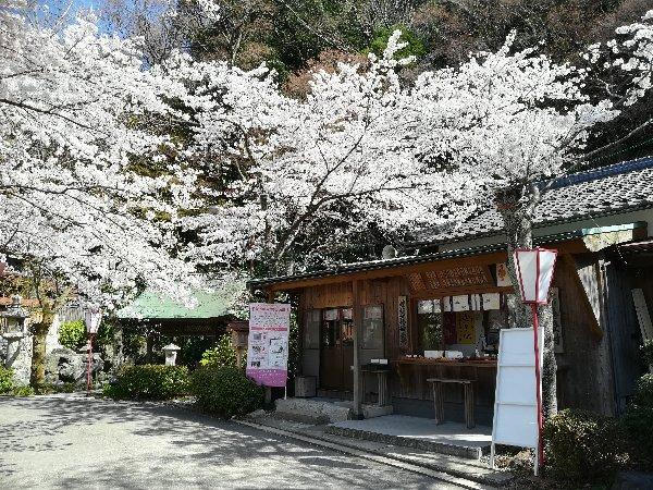 kanakasakigu3-tsuruga-025.jpg