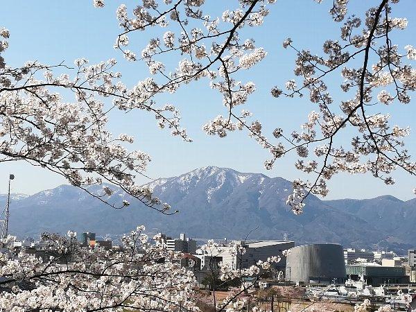 kanakasakigu3-tsuruga-042.jpg