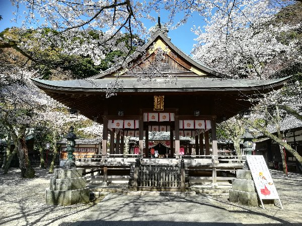 kanakasakigu3-tsuruga-053.jpg