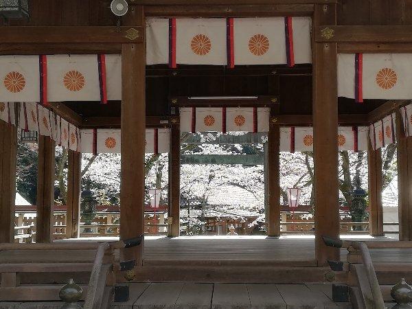 kanakasakigu3-tsuruga-055.jpg