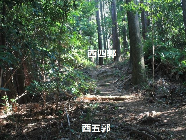 安倍城IMG_7800
