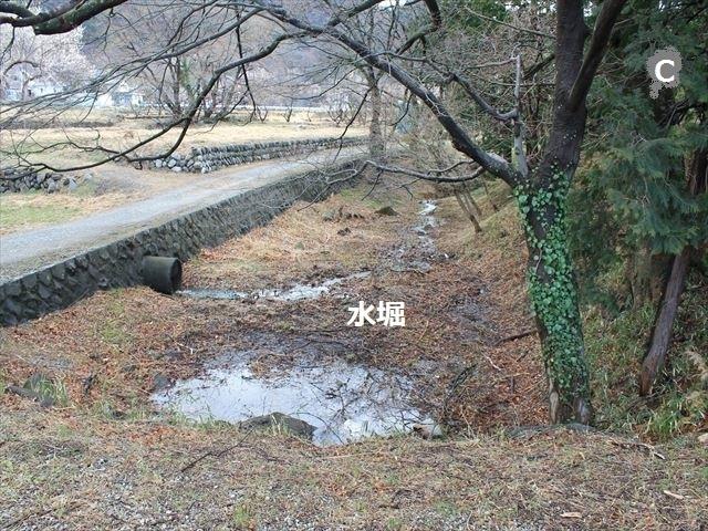 武田B014