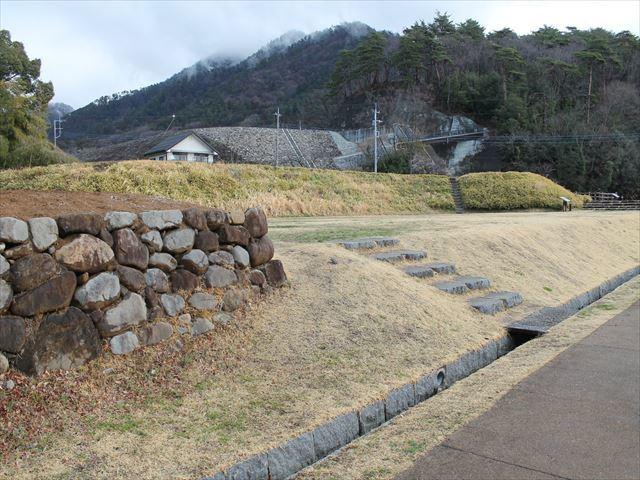 武田A014