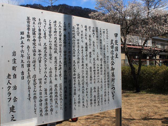 武田D045