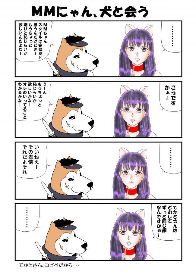 MMにゃん、犬と会う