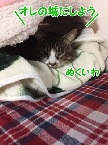 S_7548685777953.jpg
