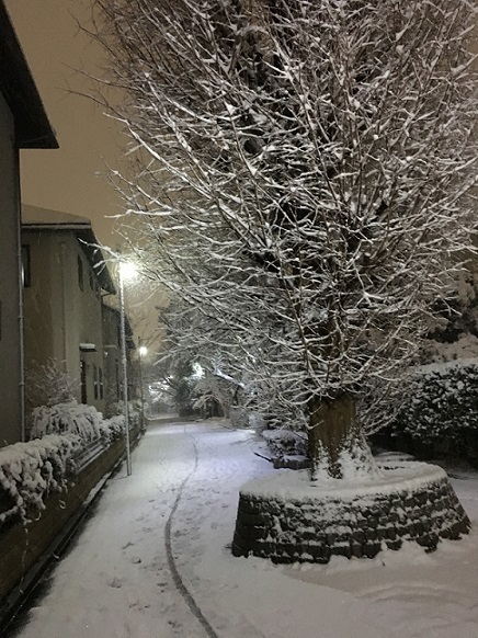 大雪20180122