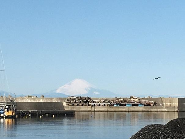 保田漁港から富士山20180127