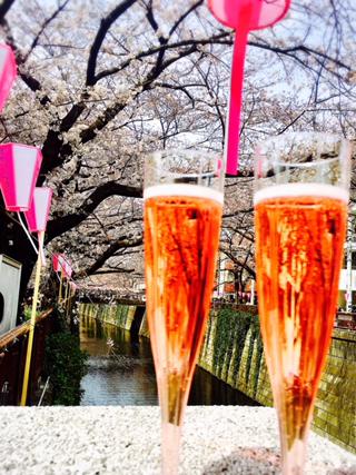 桜スパークリング