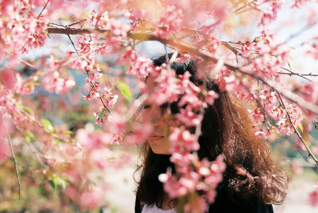 潜在意識、阿頼耶識は、何もなくても花を咲かせます。