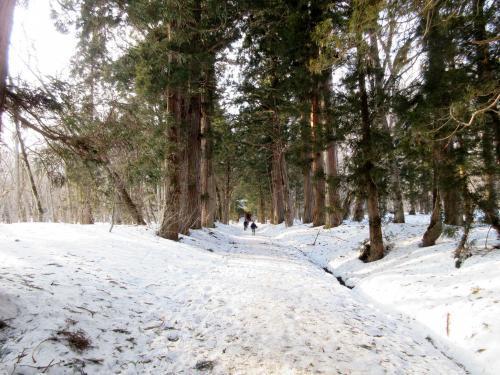 雪の中でも向かう人が結構いる