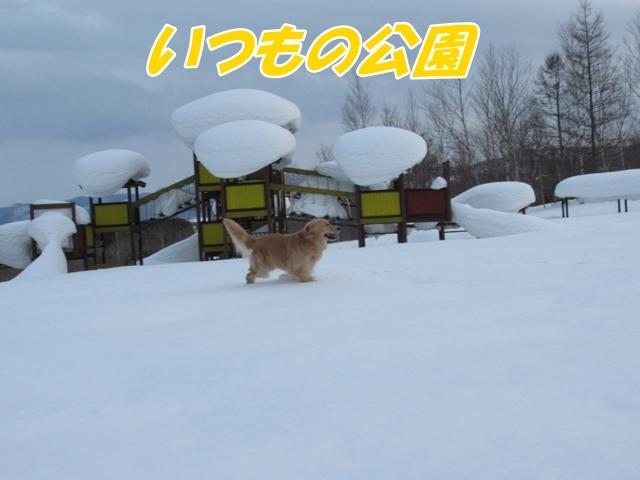 IMG_5151.jpg
