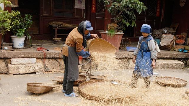 china-694593_640.jpg